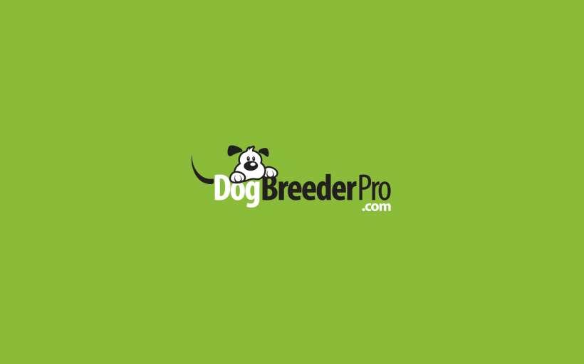 Dog-Breeder-Pro